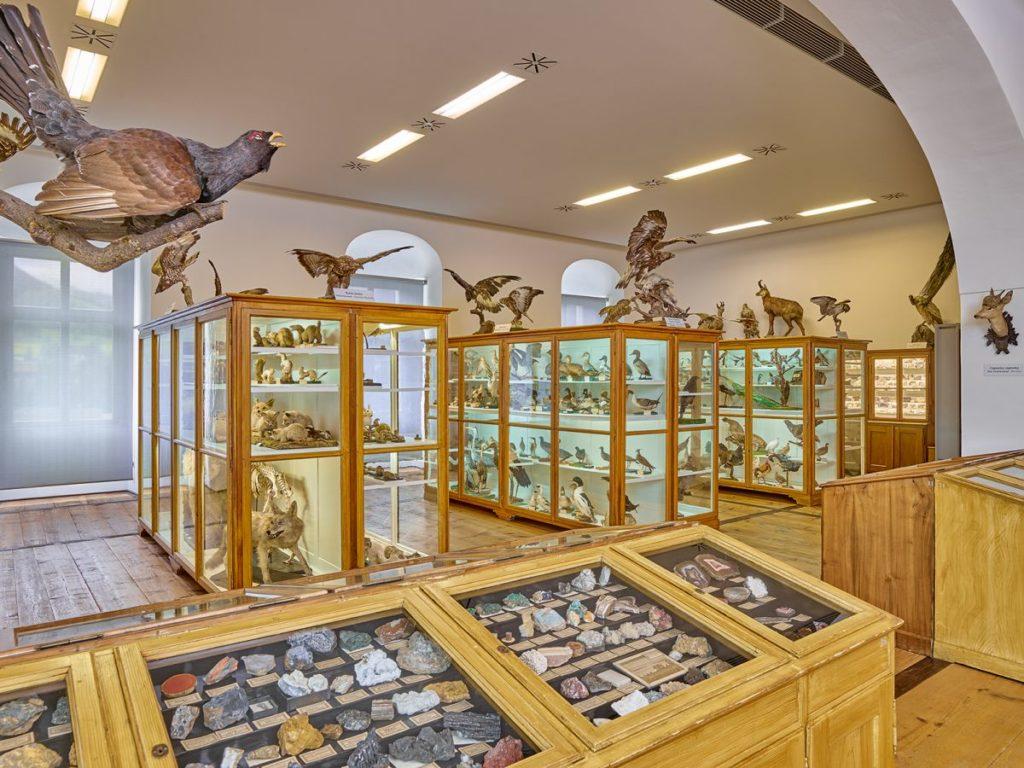 Kloster Admont  Naturhistorisches Museum